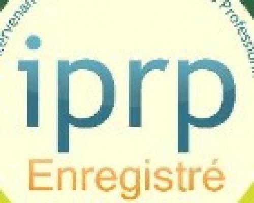 Formation d'un responsable sécurité IPRP